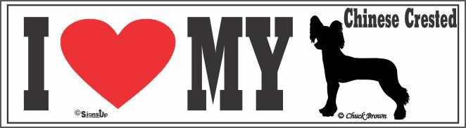 Chinese Crested Bumper Sticker I Love My