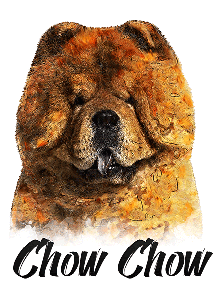 Chow Chow T-Shirt - Vivid Colors