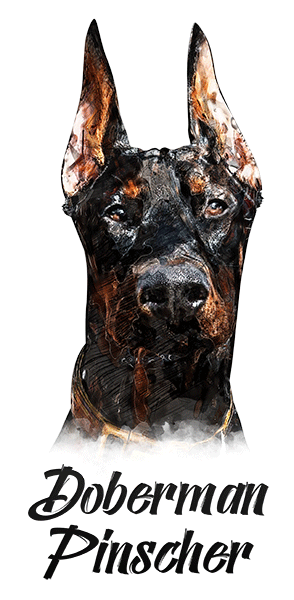 Doberman Cropped T-Shirt - Vivid Colors