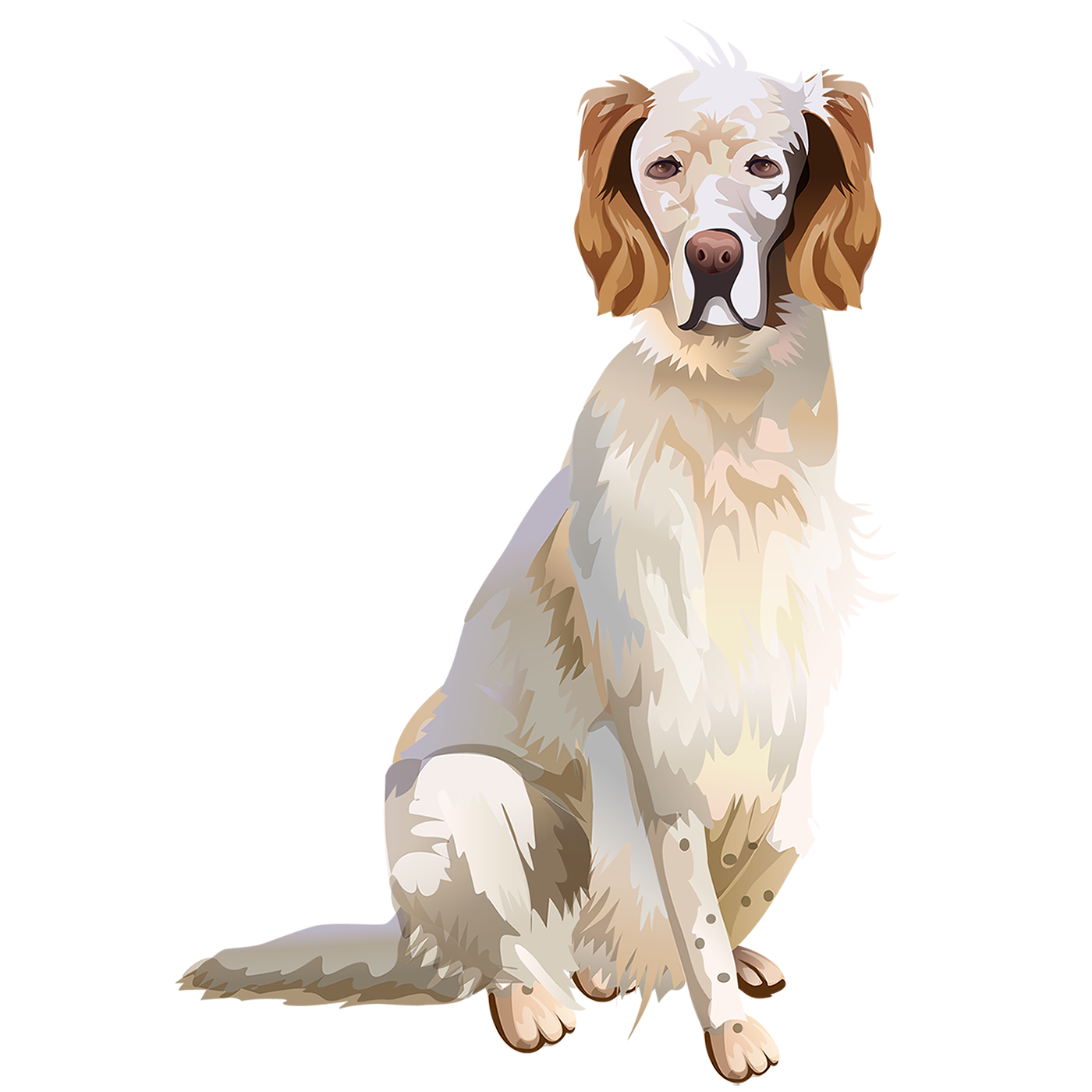 English Setter T-Shirt - Vibrant Vector