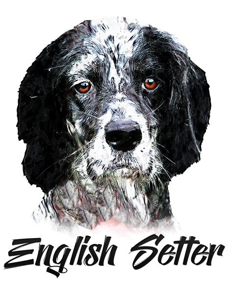 English Setter T-Shirt - Vivid Colors