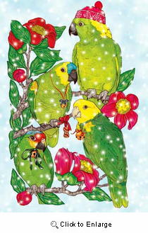 Parrot Christmas Cards