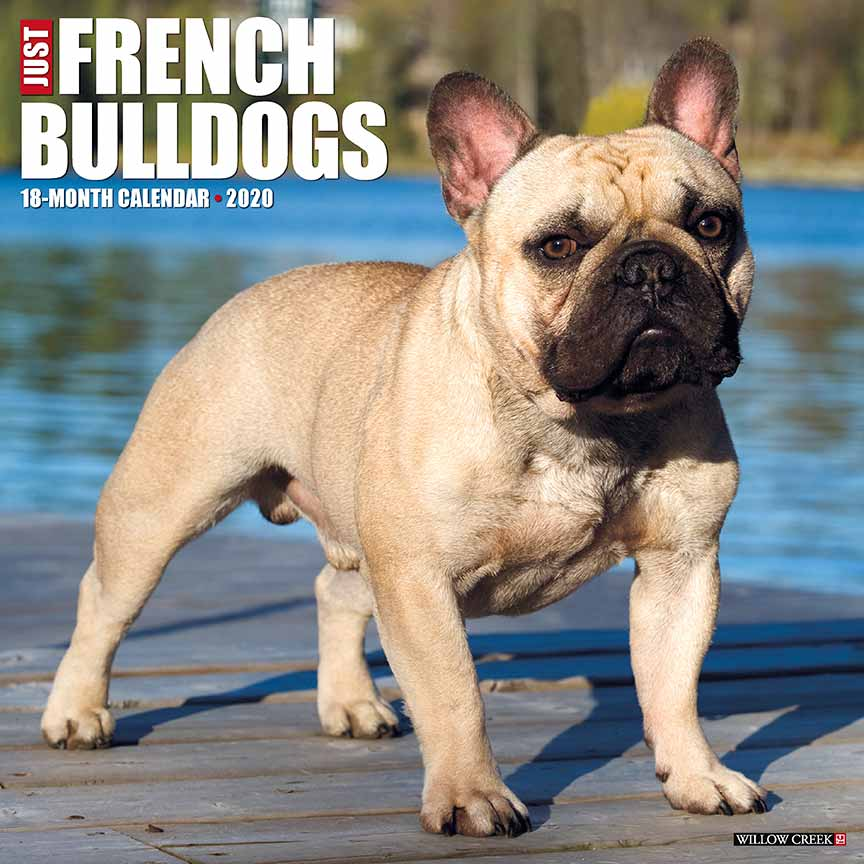 2020 Frenchies Calendar