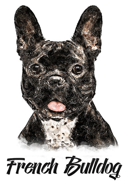 French Bulldog B/W T-Shirt - Vivid Colors