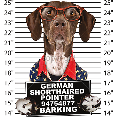 German Shorthair Pointer: T Shirt - Mug Shot