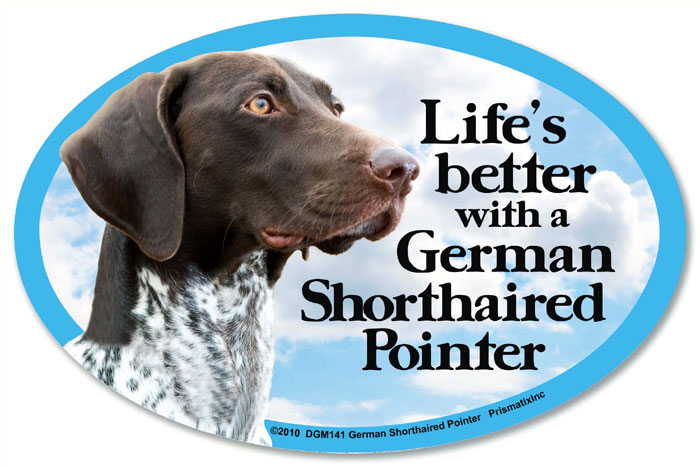 German Shorthaired Pointer Car Magnet - Life's Better