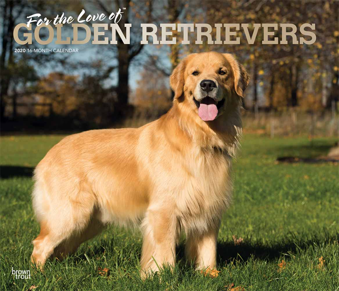 2020 For the Love of Golden Retrievers Deluxe Calendar