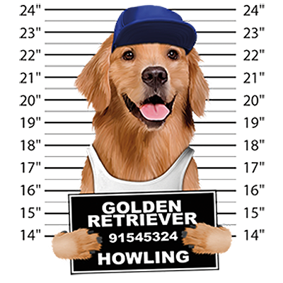 Golden Retriever T-Shirt - Mug Shot