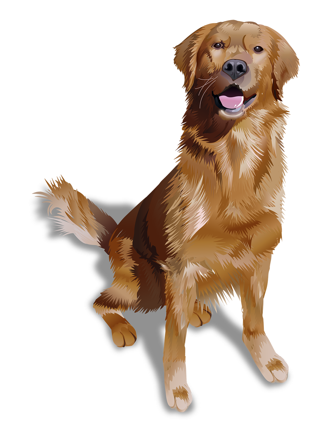 Golden Retriever T-Shirt - Vibrant Vector