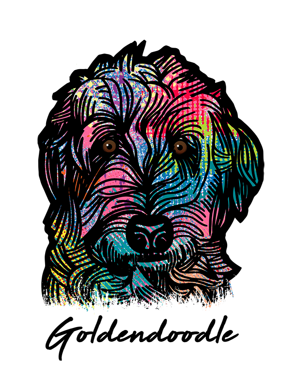 Goldendoodle T Shirt Colorful Abstract