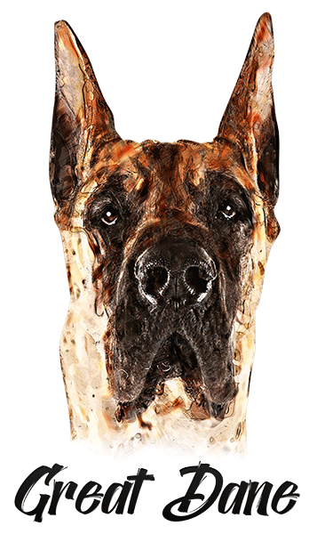 Great Dane Cropped T-Shirt - Vivid Colors