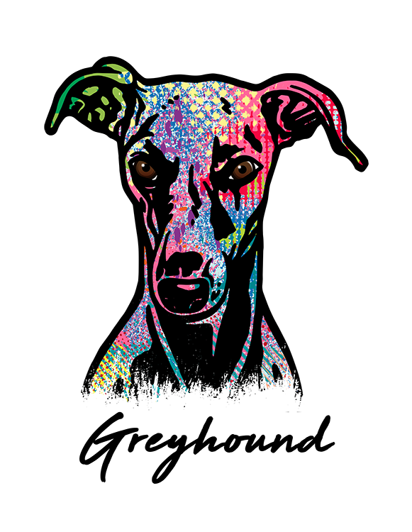 Greyhound T Shirt Colorful Abstract