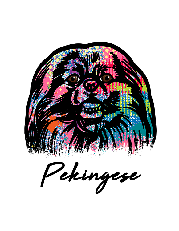 Pekingese T Shirt Colorful Abstract