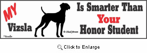 Vizsla Bumper Sticker Honor Student