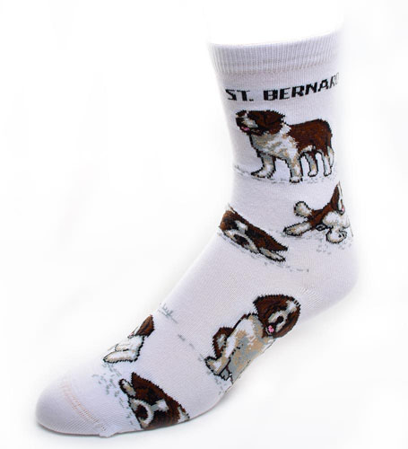 Saint Bernard Socks Poses 2
