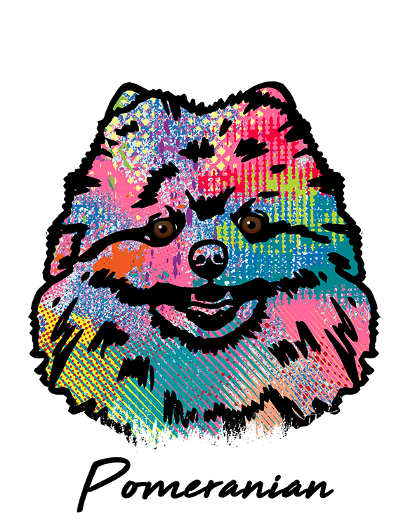Pomeranian T Shirt Colorful Abstract