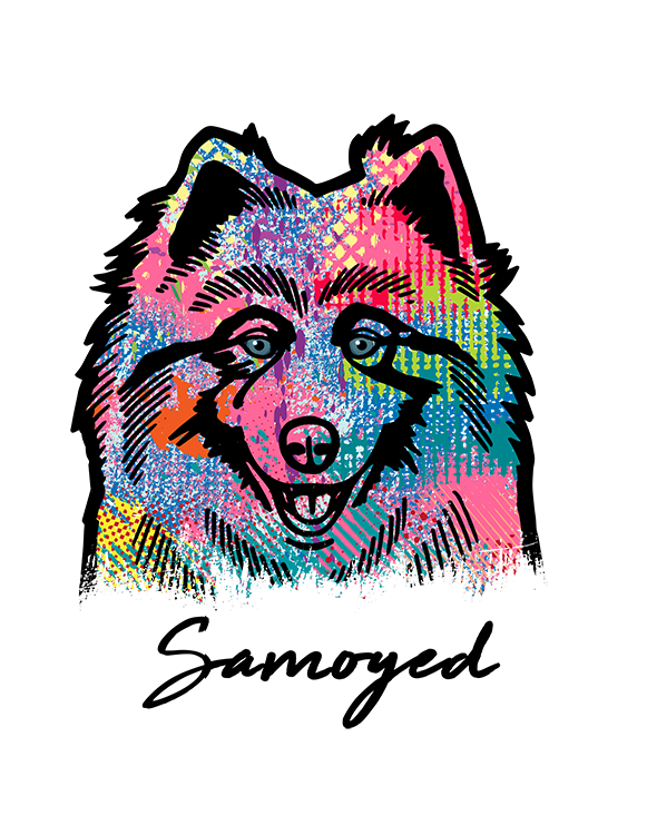 Samoyed T Shirt Colorful Abstract