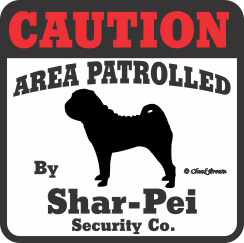 Shar Pei Bumper Sticker Caution