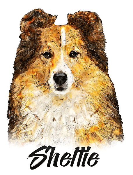 Sheltie T-Shirt - Vivid Colors