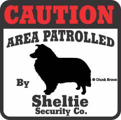 Shetland Sheepdog Bumper Sticker Caution