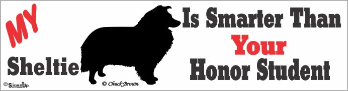 Shetland Sheepdog Bumper Sticker Honor Student