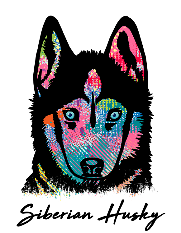 Siberian Husky T Shirt Colorful Abstract