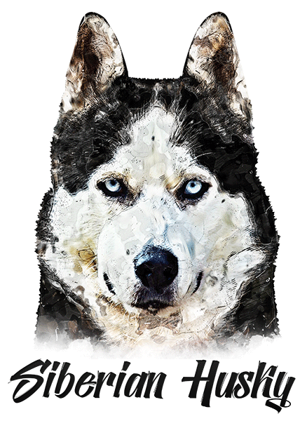 Siberian Husky T-Shirt - Vivid Colors