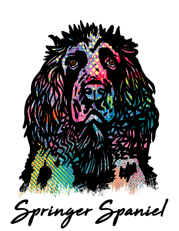 Springer Spaniel T Shirt Colorful Abstract