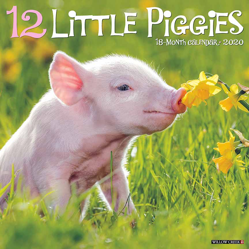 2020 12 Little Piggies Calendar