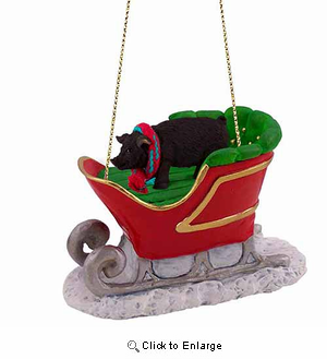 Pig Sleigh Ride Christmas Ornament Black