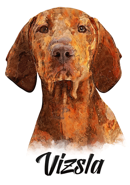 Vizsla T-Shirt - Vivid Colors