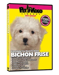 Bichon Frise Video