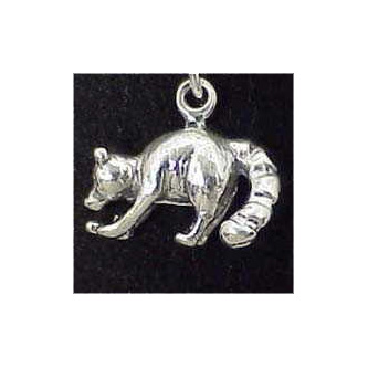 Raccoon Sterling Silver Charm