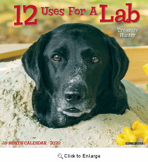 2020 12 Uses for a Lab Calendar Willow Creek
