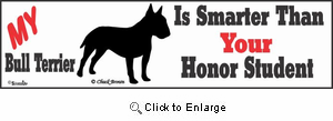 Bull Terrier Bumper Sticker Honor Student