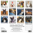 2020 Dog-Gone-It Calendar