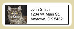 Gray Cat Address Labels