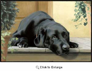 Black Lab Floormat
