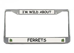 Ferret License Plate Frame