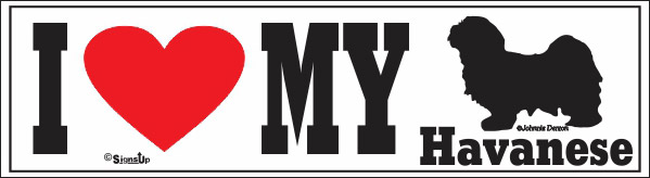 Havanese Bumper Sticker I Love My