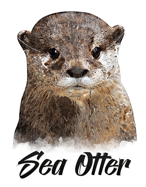 Sea Otter T-Shirt - Vivid Colors