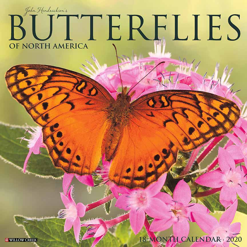 2020 Butterflies Calendar Willow Creek