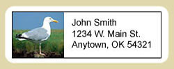 Seagull Address Labels