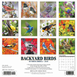 2020 Backyard Birds Calendar Willow Creek