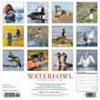 2020 Waterfowl  Calendar Willow Creek