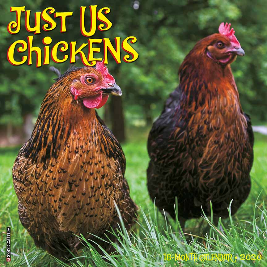 2020 Just Us Chickens Calendar Willow Creek