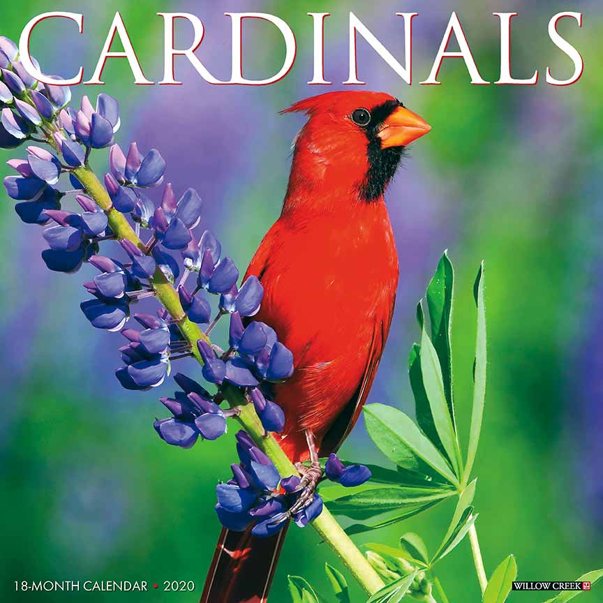 2020 Cardinals Calendar Willow Creek