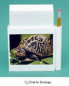 Turtle Hold-a-Note