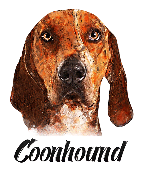 Coonhound T-Shirt - Vivid Colors