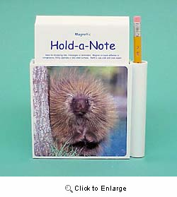 Porcupine Gifts | Animalden.com